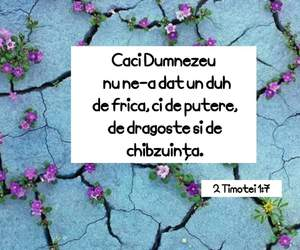 2 timotei versets bible image