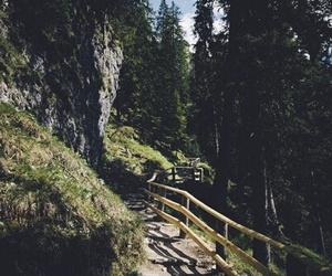 amazing, bridge, and free image