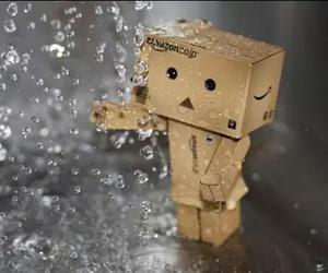 danbo and rain image