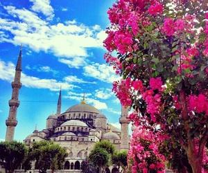mosque, turkiye, and turkey image