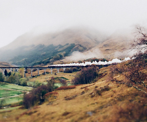 train, harry potter, and nature image