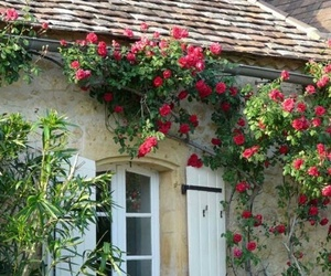 house, beautiful, and flowers image