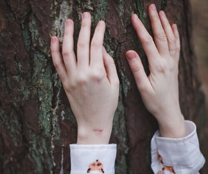 hands, tree, and pale image