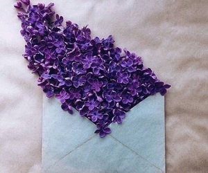 flowers, Letter, and purple image