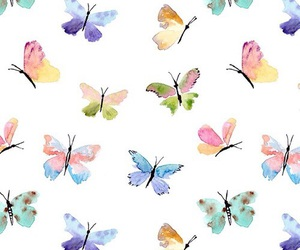 butterflies, wallpapers, and coloufull image