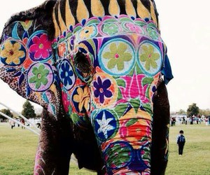 elephant, animal, and colorful image