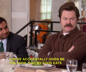 ron swanson and parks and recreation image