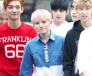 Seventeen, jihoon, and pledis 17 image