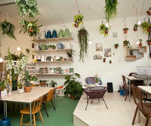 hipster, home, and plants image