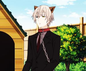 anime, inu x boku ss, and soushi miketsukami image