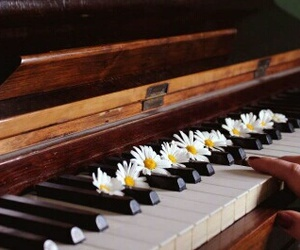 flowers, music, and piano image