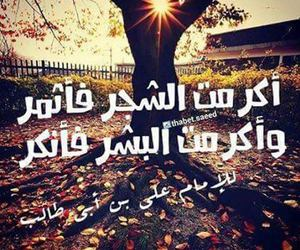 حكم, ﺍﻗﻮﺍﻝ, and علي بن ابي طالب image
