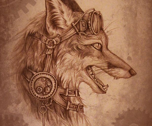 drawing, fox, and sketch image