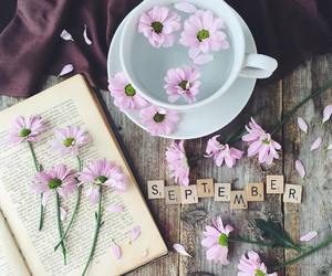 flowers, book, and September image