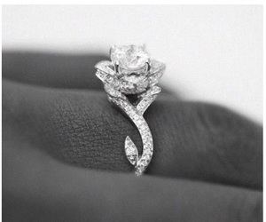 engaged, ring, and rings image