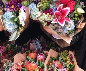 daisies, fall, and farmers market image