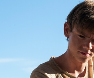 newt, thomas brodie sangster, and maze runner image