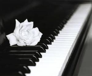 beautiful, black and white, and music image