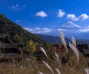 日本, 田舎, and 秋 image