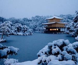 雪, 日本, and 冬 image