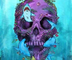 skull, shark, and art image