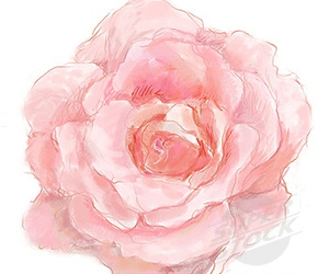 drawing, flower, and pink image