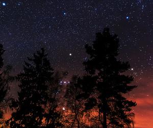 nature and stars image