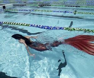 mermaid, water, and pool image