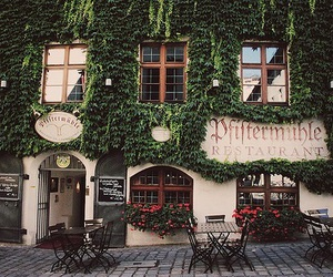 restaurant, photography, and flowers image