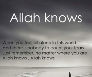 allah, islam, and allah knows image