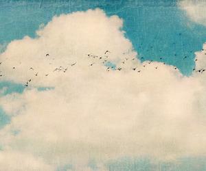 sky, bird, and clouds image