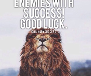 fearless, Invincible, and lion image