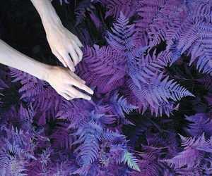 purple, hands, and plants image
