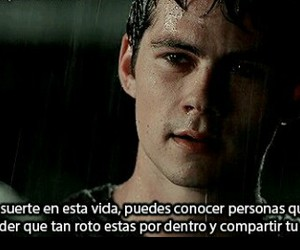 frases, people, and teen wolf image