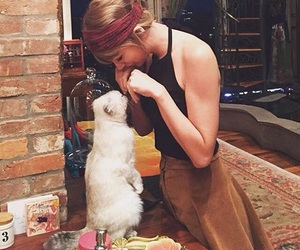 Taylor Swift, cat, and taylor image