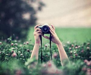 garden, camara, and camera image