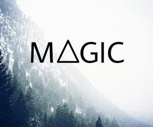 magic, forest, and snow image