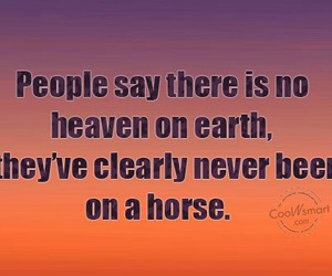 equestrian, heaven, and horse image