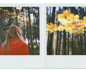 autumn, diptych, and polaroid image