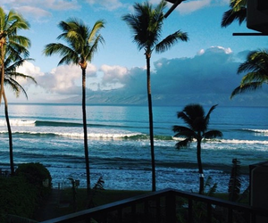 palmeras, paisaje, and agüa image
