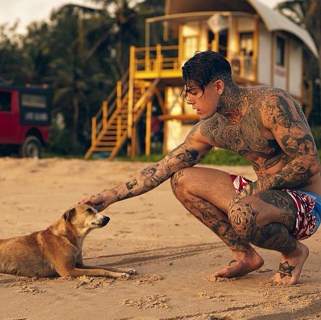 tattoo and stephen james image