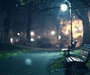 night, light, and park image