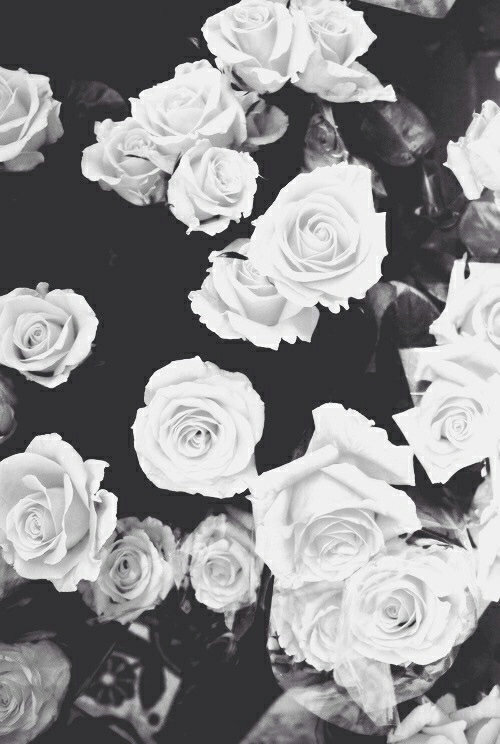 149 Images About Wallpaper On We Heart It See More About