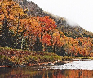 autumn, lake, and fall image
