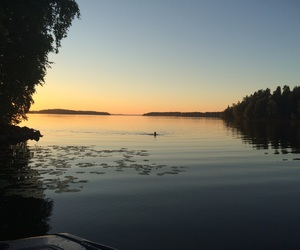 finland, summer, and nature image