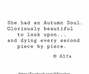 autumn, beautiful, and soul image