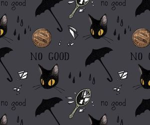 black, black cat, and Halloween image