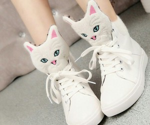 white, cat, and shoes image