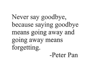 quote, disney, and peter pan image