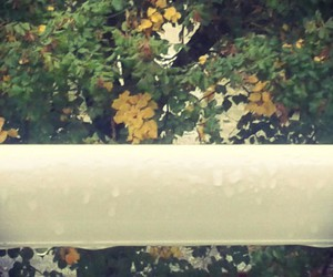 matin, rainy morning, and pluie image